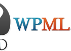 Security Issues in WordPress MultiLanguage Plugin (WPML)
